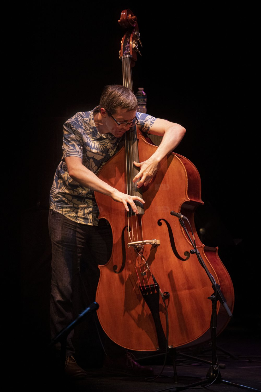 Bill FRISELL Trio Thomas Morgan basse acoustique Rudy