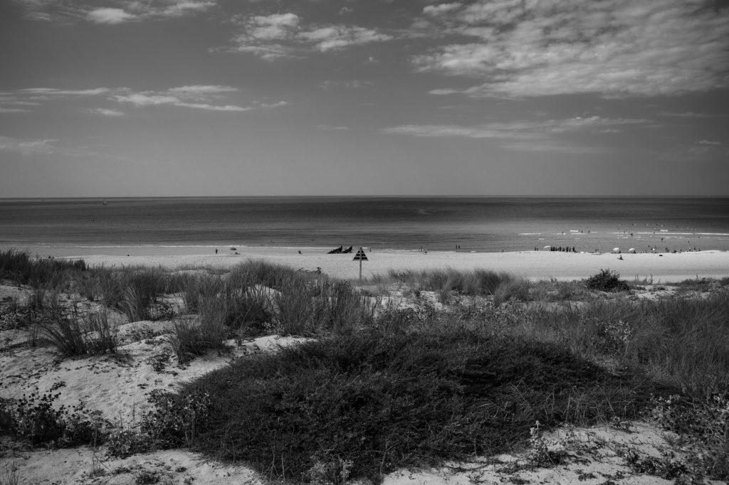 Sur les dunes de la plage du Penon à Seignosse, Landes 7Artisans 28mm F1.4  F2.0 - ISO 80 - Leica M9