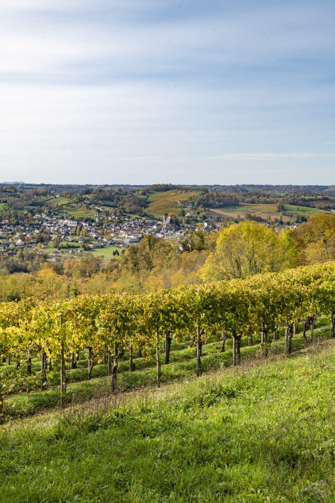 Vue sur Monein avec en premier plan des vignes du Jurançon